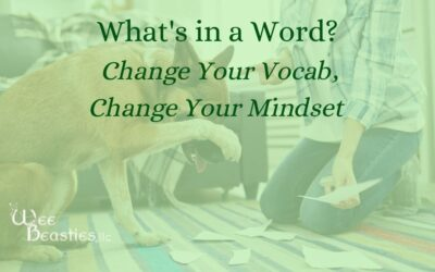 What's in a Word? Change Your Vocab, Change Your Mindset