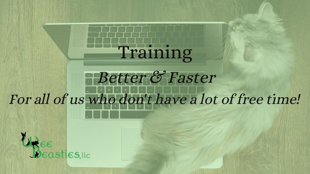 "Blog title ""Training Better & Faster for all of us who don't have a lot of free time"""