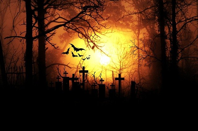 Cemetery in forest backlit by moon