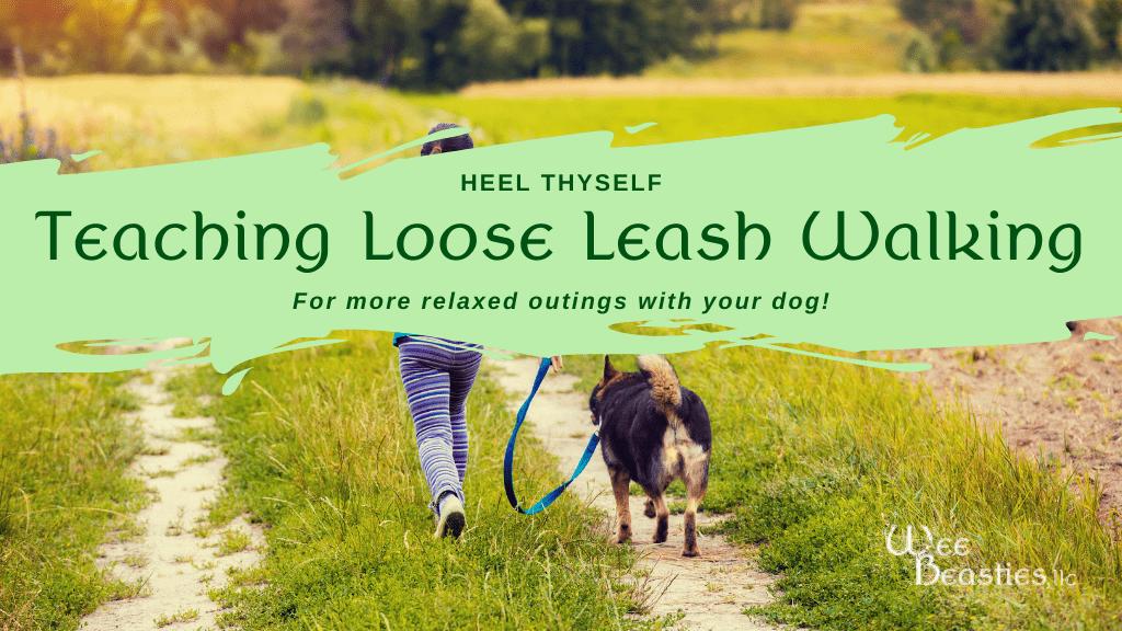 "Girl loose leash walking dog in field with blog title ""Heel Thyself: Teaching Loose Leash Walking"" over top"