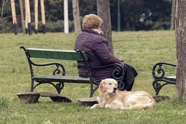 Lady relaxing on a park bench with her dog